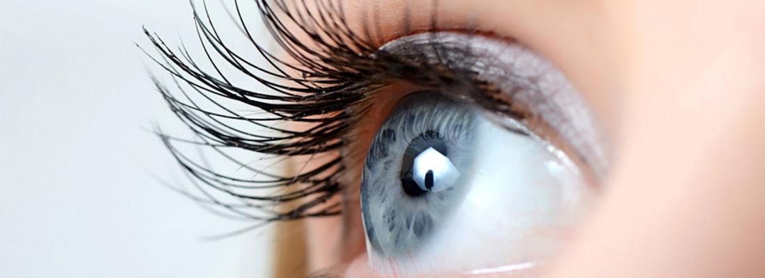 optometria comportamental granada los carmenes
